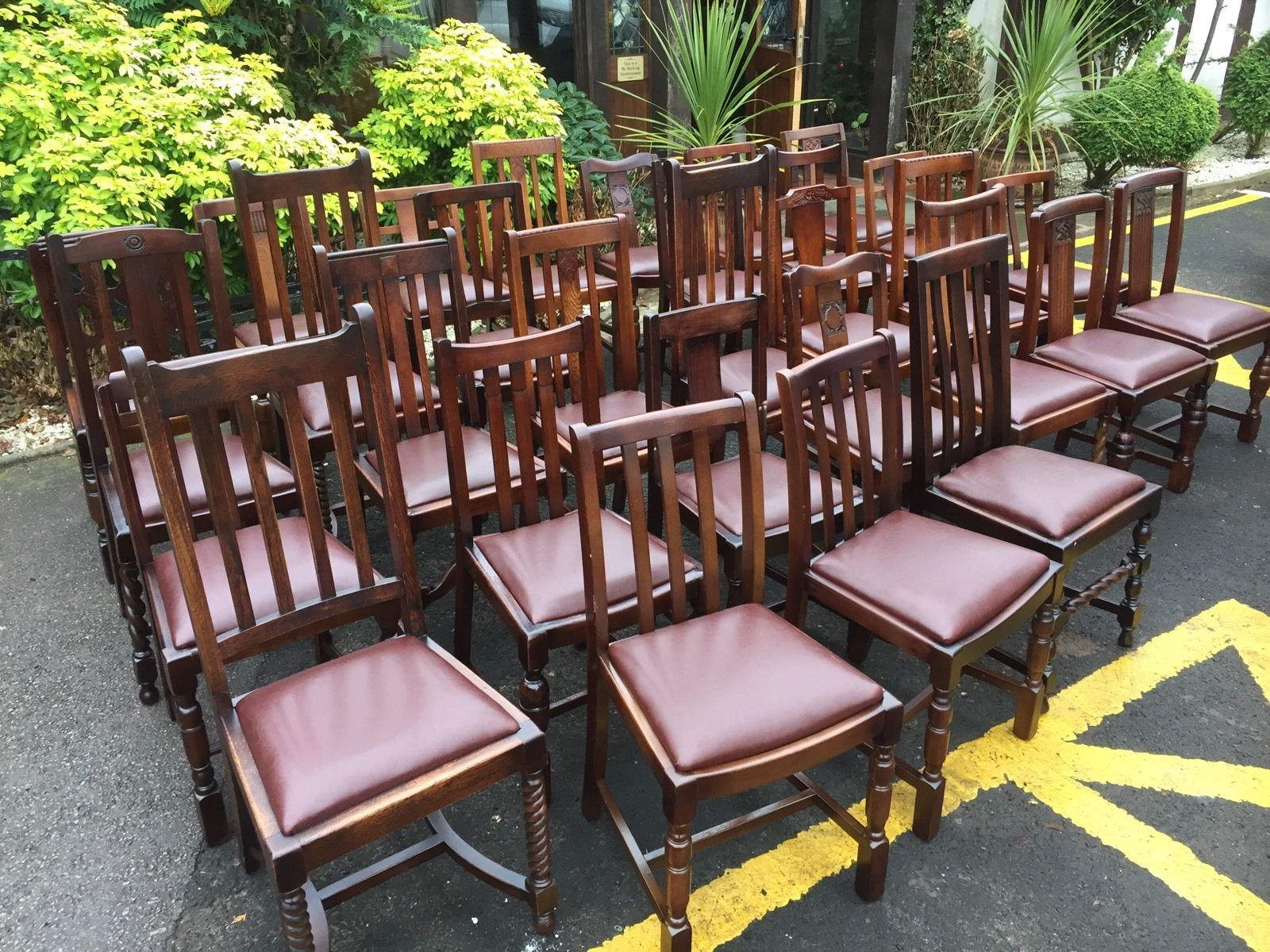 LARGE COLLECTION OF OAK 1920s DINING CHAIRS – IDEAL FOR PUBS
